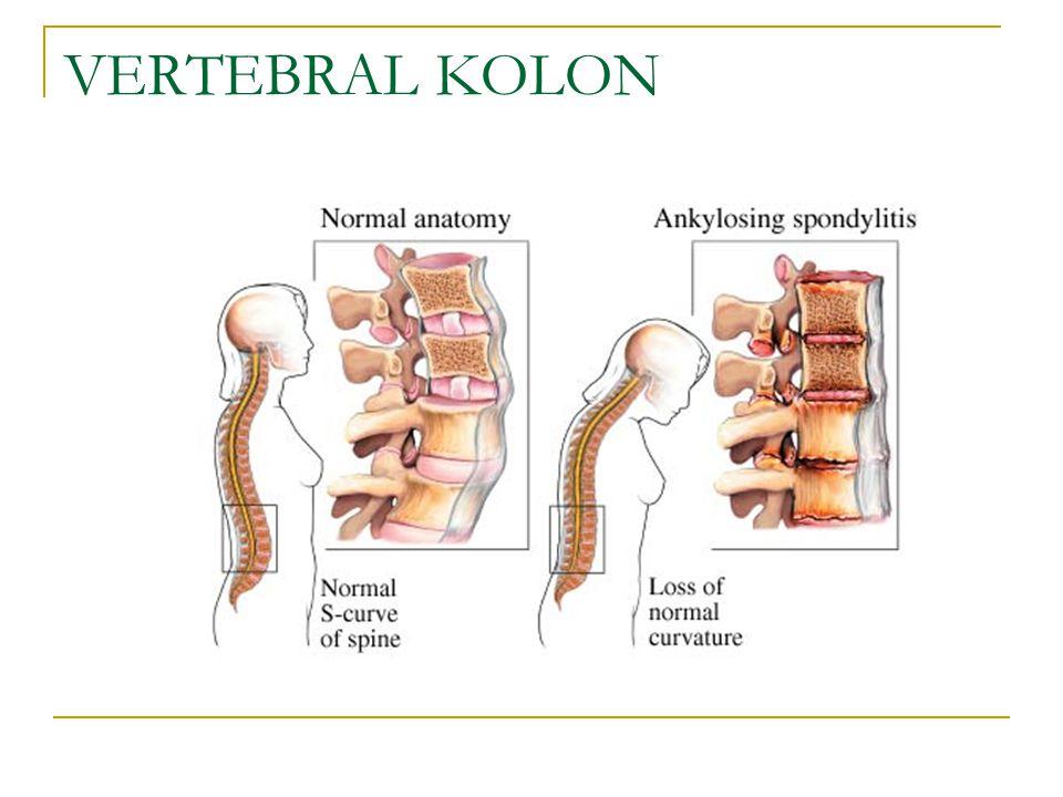 Kaplıca tedavisi: Ankilozan Spondilit tedavisinde rehabilitasyonla birlikte yapılan kaplıca tedavisi, hastanın hareket yeteneğinin korunmasında büyük yarar sağlar.