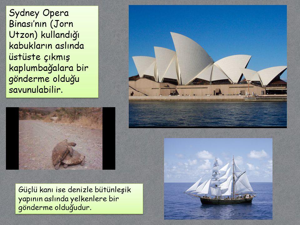 Sydney Opera Binası'nın (Jorn Utzon) kullandığı kabukların aslında üstüste çıkmış kaplumbağalara bir gönderme olduğu savunulabilir.