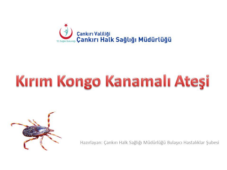 Hazırlayan: Çankırı Halk Sağlığı Müdürlüğü Bulaşıcı Hastalıklar Şubesi