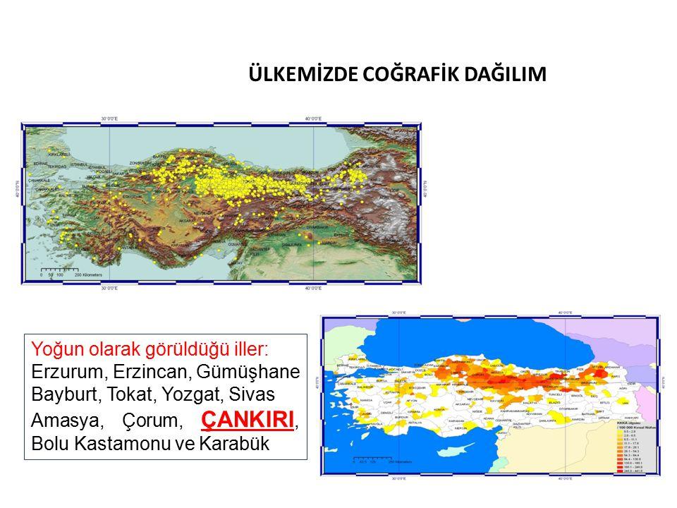ÜLKEMİZDE COĞRAFİK DAĞILIM Yoğun olarak görüldüğü iller: Erzurum, Erzincan, Gümüşhane Bayburt, Tokat, Yozgat, Sivas Amasya, Çorum, ÇANKIRI, Bolu Kastamonu ve Karabük
