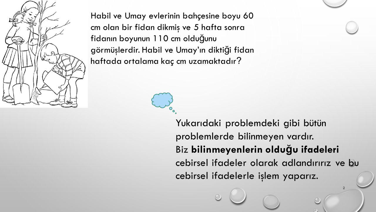 Habil ve Umay evlerinin bahçesine boyu 60 cm olan bir fidan dikmiş ve 5 hafta sonra fidanın boyunun 110 cm oldu ğ unu görmüşlerdir.