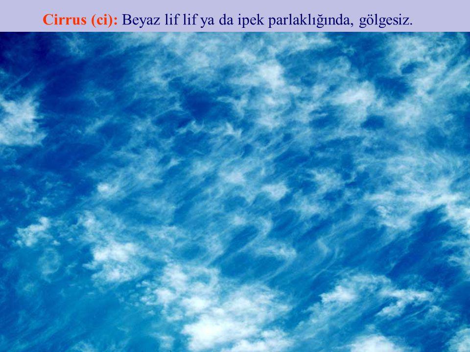 Cumulus (Cu): Üstte karnabahar gibi kubbe ve kuleler geliştirmiş yoğun bulutlardır.
