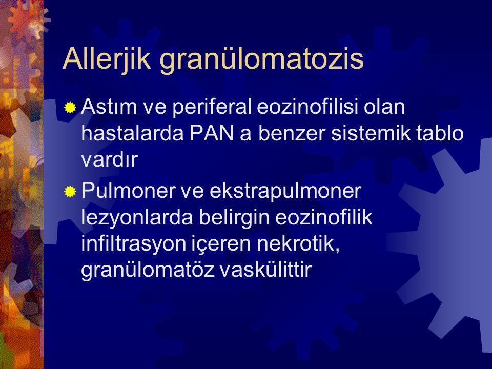 Allerjik granülomatozis  Astım ve periferal eozinofilisi olan hastalarda PAN a benzer sistemik tablo vardır  Pulmoner ve ekstrapulmoner lezyonlarda belirgin eozinofilik infiltrasyon içeren nekrotik, granülomatöz vaskülittir