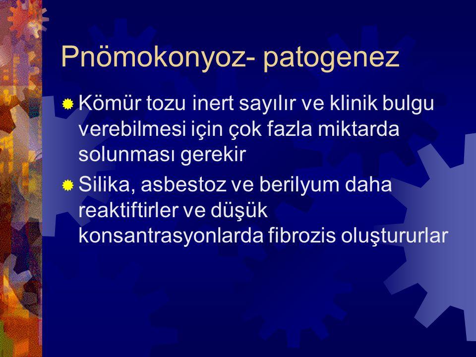 Pnömokonyoz- patogenez  Kömür tozu inert sayılır ve klinik bulgu verebilmesi için çok fazla miktarda solunması gerekir  Silika, asbestoz ve berilyum daha reaktiftirler ve düşük konsantrasyonlarda fibrozis oluştururlar