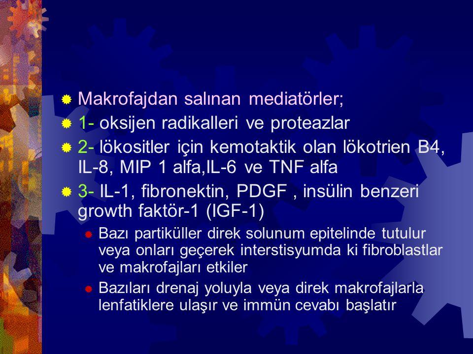  Makrofajdan salınan mediatörler;  1- oksijen radikalleri ve proteazlar  2- lökositler için kemotaktik olan lökotrien B4, IL-8, MIP 1 alfa,IL-6 ve TNF alfa  3- IL-1, fibronektin, PDGF, insülin benzeri growth faktör-1 (IGF-1)  Bazı partiküller direk solunum epitelinde tutulur veya onları geçerek interstisyumda ki fibroblastlar ve makrofajları etkiler  Bazıları drenaj yoluyla veya direk makrofajlarla lenfatiklere ulaşır ve immün cevabı başlatır