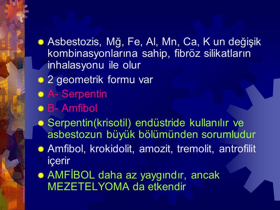  Asbestozis, Mğ, Fe, Al, Mn, Ca, K un değişik kombinasyonlarına sahip, fibröz silikatların inhalasyonu ile olur  2 geometrik formu var  A- Serpentin  B- Amfibol  Serpentin(krisotil) endüstride kullanılır ve asbestozun büyük bölümünden sorumludur  Amfibol, krokidolit, amozit, tremolit, antrofilit içerir  AMFİBOL daha az yaygındır, ancak MEZETELYOMA da etkendir