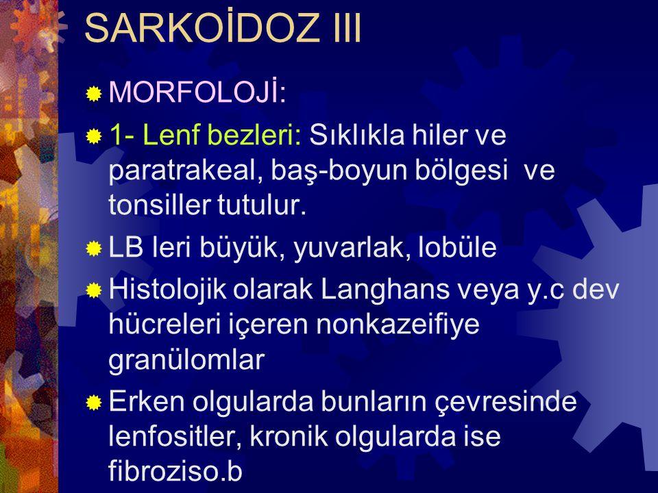 SARKOİDOZ III  MORFOLOJİ:  1- Lenf bezleri: Sıklıkla hiler ve paratrakeal, baş-boyun bölgesi ve tonsiller tutulur.