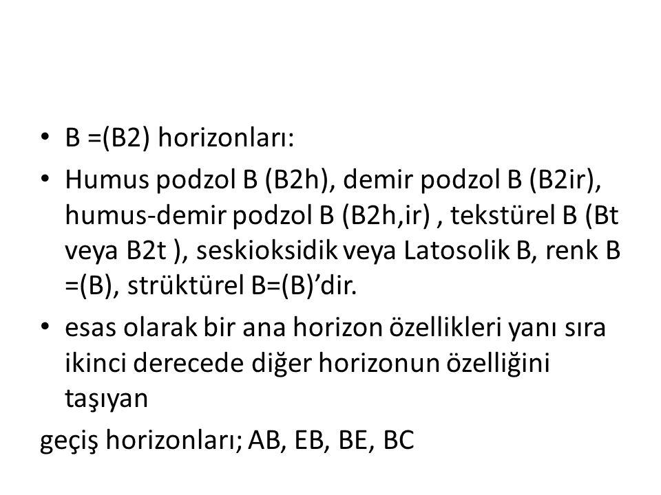 B =(B2) horizonları: Humus podzol B (B2h), demir podzol B (B2ir), humus-demir podzol B (B2h,ir), tekstürel B (Bt veya B2t ), seskioksidik veya Latosol