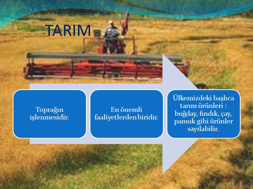 TARIM Toprağın işlenmesidir. En önemli faaliyetlerden biridir. Ülkemizdeki başlıca tarım ürünleri : buğday, fındık, çay, pamuk gibi ürünler sayılabili