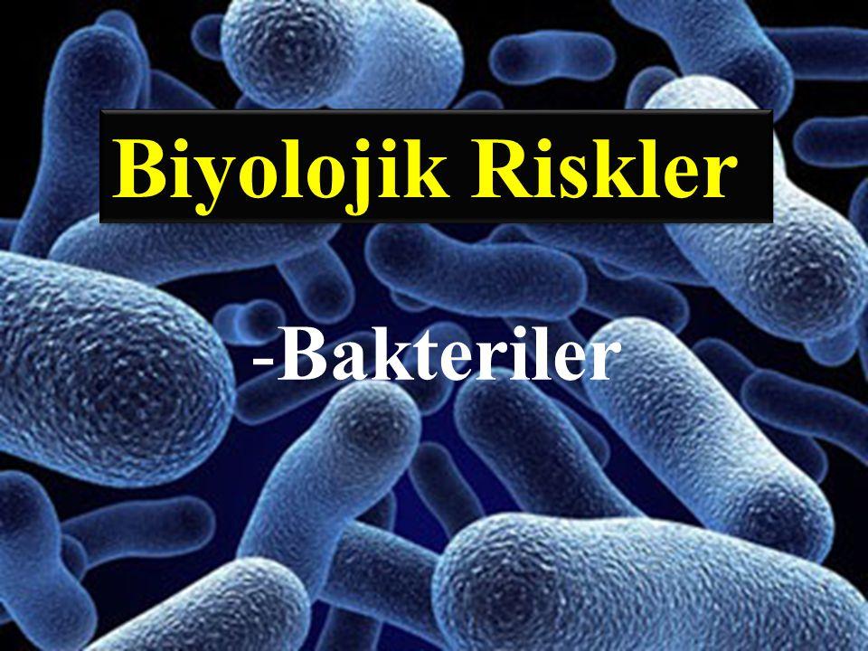 Biyolojik Riskler -Bakteriler