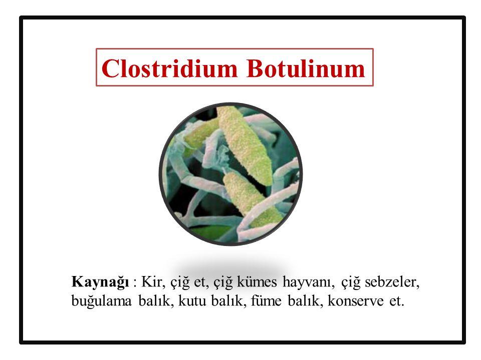 Clostridium Botulinum Kaynağı : Kir, çiğ et, çiğ kümes hayvanı, çiğ sebzeler, buğulama balık, kutu balık, füme balık, konserve et.