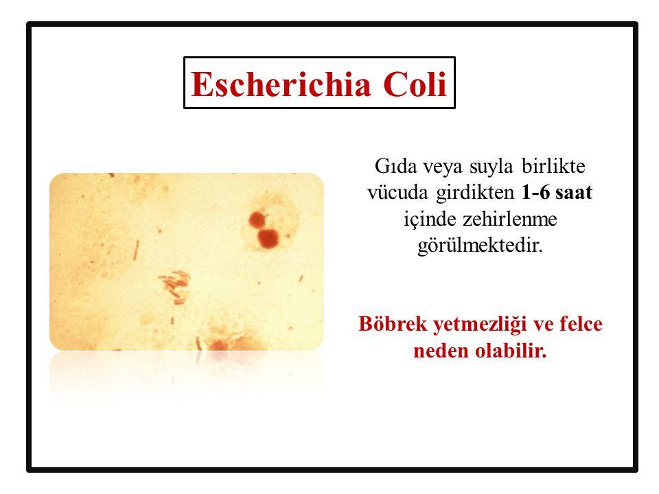 Gıda veya suyla birlikte vücuda girdikten 1-6 saat içinde zehirlenme görülmektedir. Böbrek yetmezliği ve felce neden olabilir. Escherichia Coli