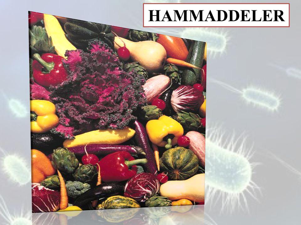 HAMMADDELER
