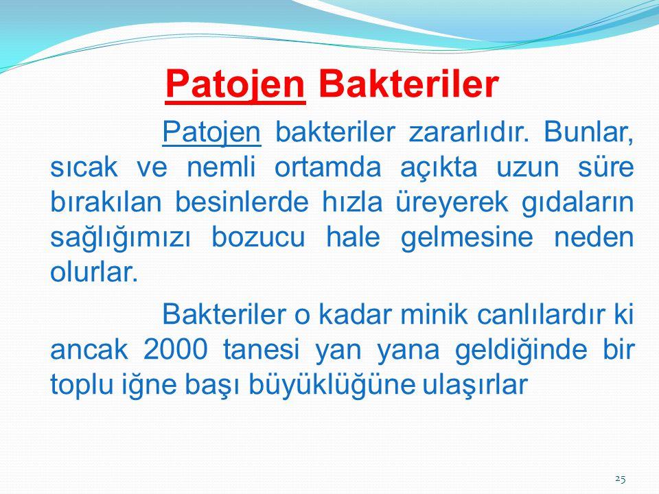 Patojen Bakteriler Patojen bakteriler zararlıdır. Bunlar, sıcak ve nemli ortamda açıkta uzun süre bırakılan besinlerde hızla üreyerek gıdaların sağlığ