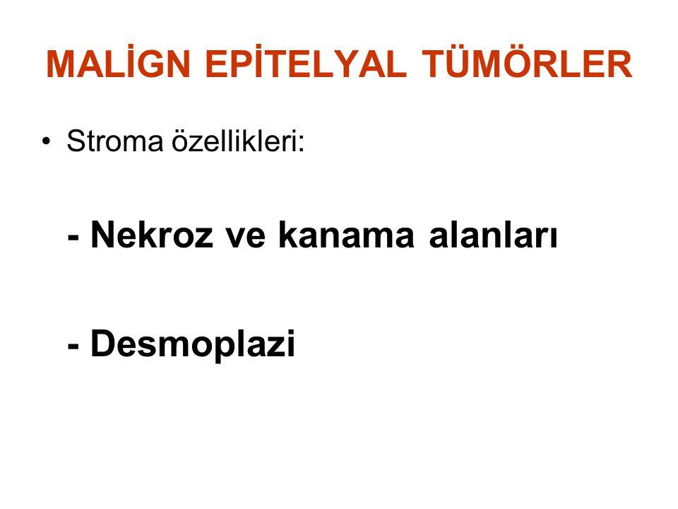MALİGN EPİTELYAL TÜMÖRLER Stroma özellikleri: - Nekroz ve kanama alanları - Desmoplazi