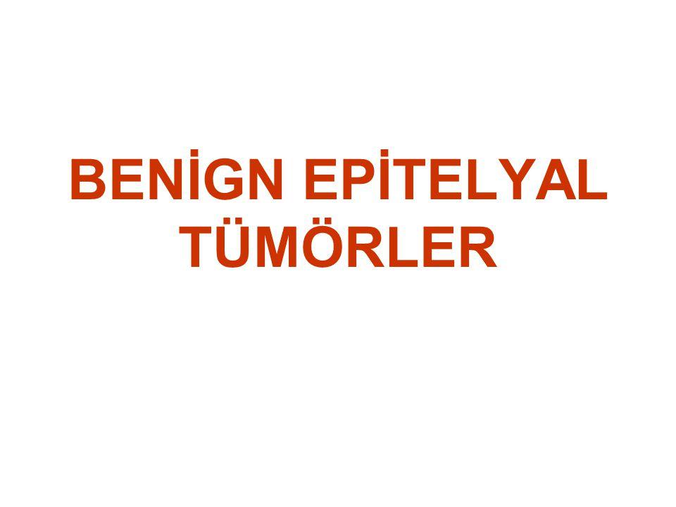 Benign Epitelyal Tümörler Papillom Polip Adenom