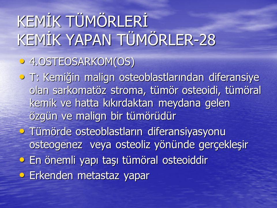 KEMİK TÜMÖRLERİ KEMİK YAPAN TÜMÖRLER-28 4.OSTEOSARKOM(OS) 4.OSTEOSARKOM(OS) T: Kemiğin malign osteoblastlarından diferansiye olan sarkomatöz stroma, t
