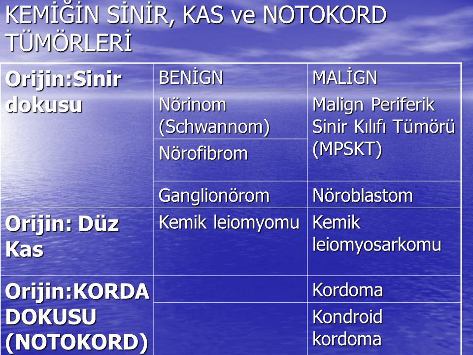 KEMİK TÜMÖRLERİ B.KIKIRDAK YAPAN TÜMÖRLER-59 B.2.a.