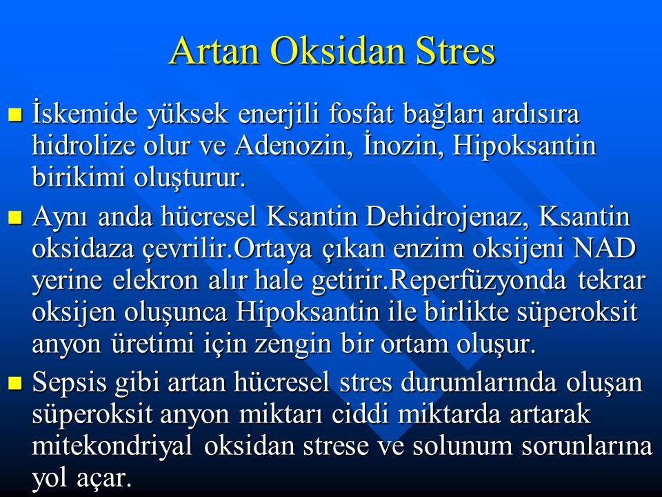 Artan Oksidan Stres İskemide yüksek enerjili fosfat bağları ardısıra hidrolize olur ve Adenozin, İnozin, Hipoksantin birikimi oluşturur.