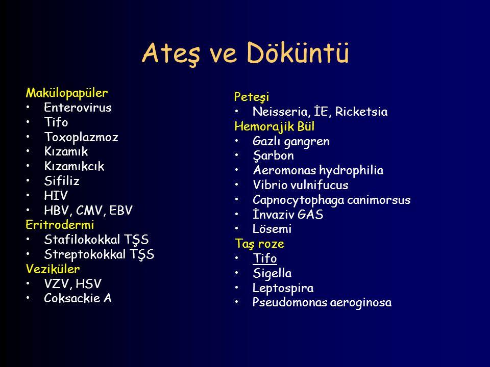 Ateş ve Döküntü Makülopapüler Enterovirus Tifo Toxoplazmoz Kızamık Kızamıkcık Sifiliz HIV HBV, CMV, EBV Eritrodermi Stafilokokkal TŞS Streptokokkal TŞ