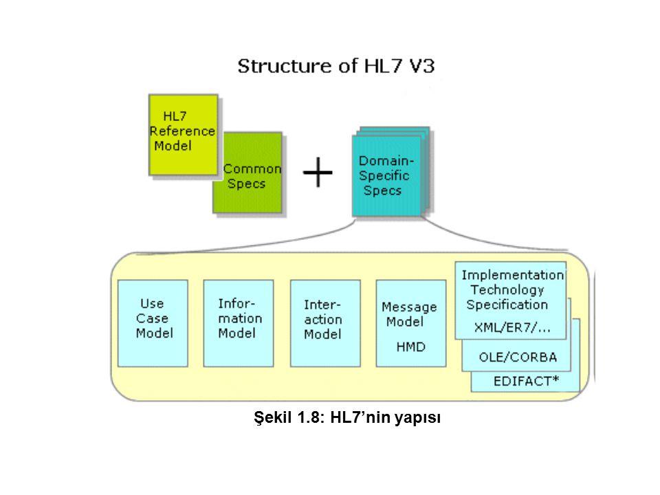 Şekil 1.8: HL7'nin yapısı