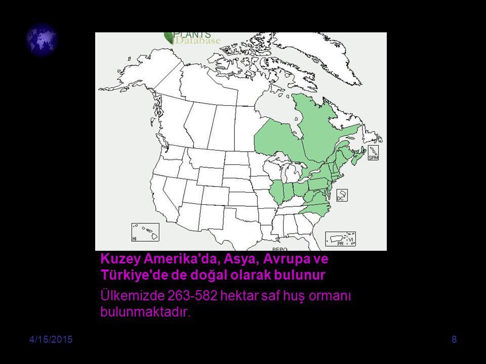 Kuzey Amerika da, Asya, Avrupa ve Türkiye de de doğal olarak bulunur Ülkemizde 263-582 hektar saf huş ormanı bulunmaktadır.
