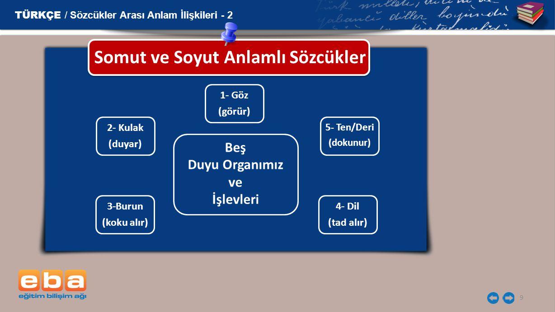 9 Somut ve Soyut Anlamlı Sözcükler TÜRKÇE / Sözcükler Arası Anlam İlişkileri - 2 1- Göz (görür) 5- Ten/Deri (dokunur) 4- Dil (tad alır) 3-Burun (koku