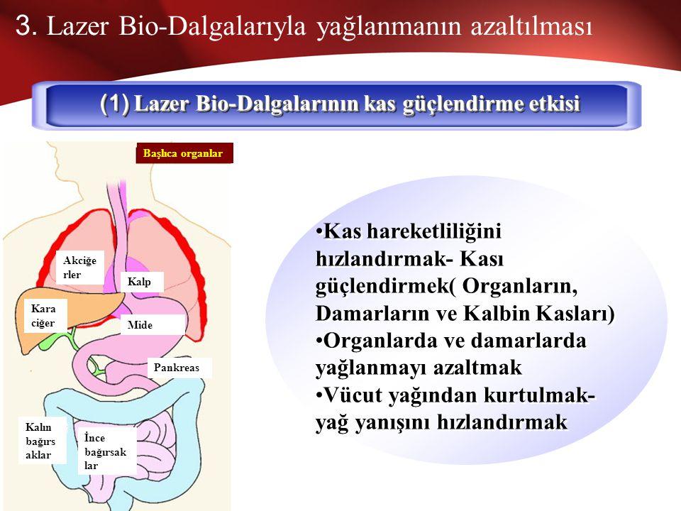 2. Sinirlerin Kontrol ve Hareketliliği Bio-Dalgaları güçlendirerek ve kontrol ederek Bioenformasyonu aktive etmek (3) Beyin sinir hücrelerinin ve siny