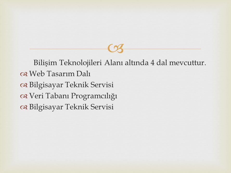   Okulumuzda mevcut olan alan Bilişim Teknik Servisi dalıdır.