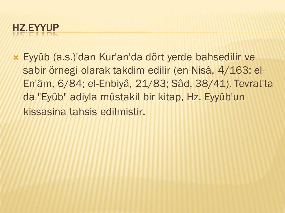  Eyyûb (a.s.)'dan Kur'an'da dört yerde bahsedilir ve sabir örnegi olarak takdim edilir (en-Nisâ, 4/163; el- En'âm, 6/84; el-Enbiyâ, 21/83; Sâd, 38/41