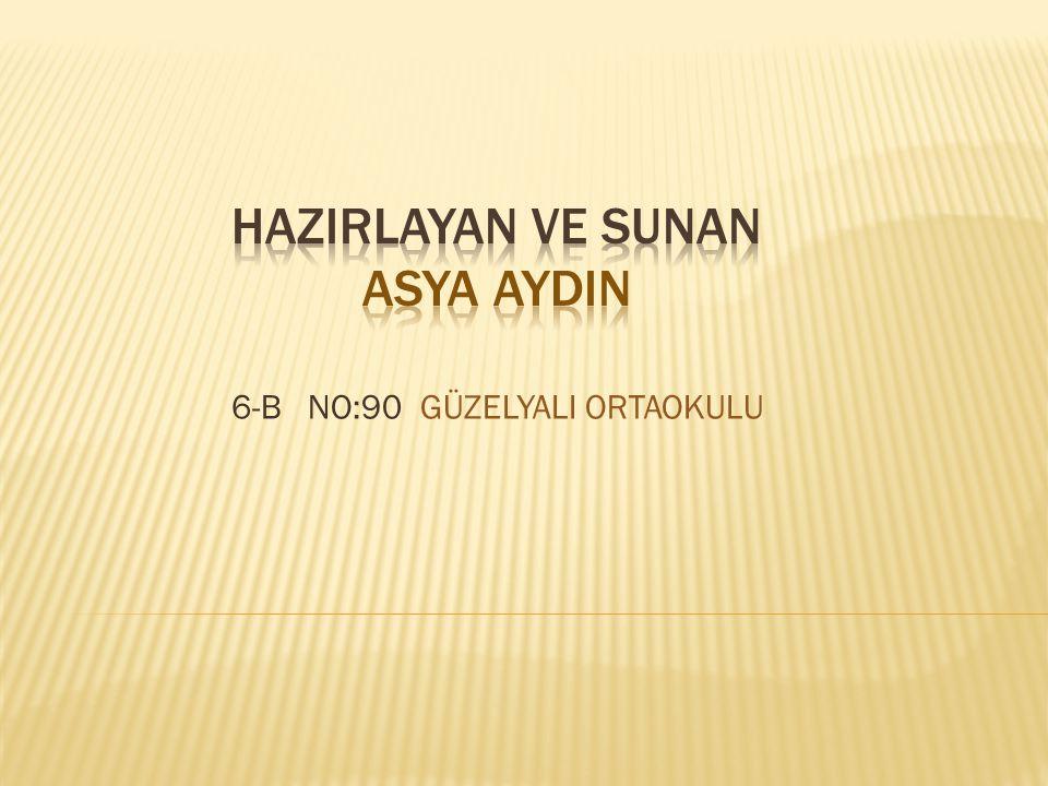 6-B NO:90 GÜZELYALI ORTAOKULU