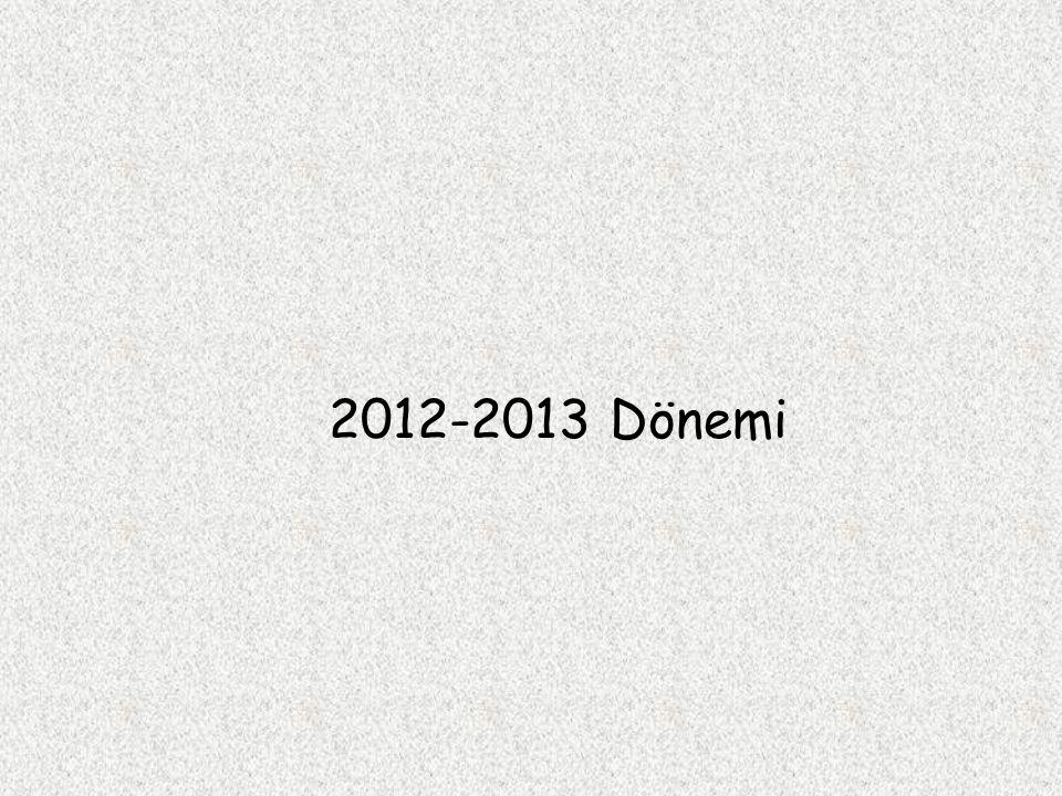 2012-2013 Dönemi