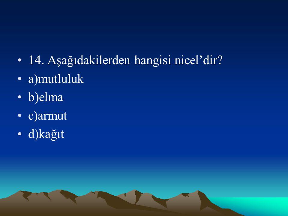 14. Aşağıdakilerden hangisi nicel'dir? a)mutluluk b)elma c)armut d)kağıt