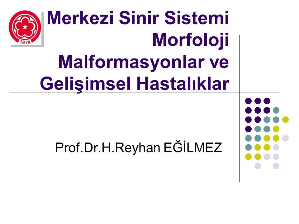 Merkezi Sinir Sistemi Morfoloji Malformasyonlar ve Gelişimsel Hastalıklar Prof.Dr.H.Reyhan EĞİLMEZ