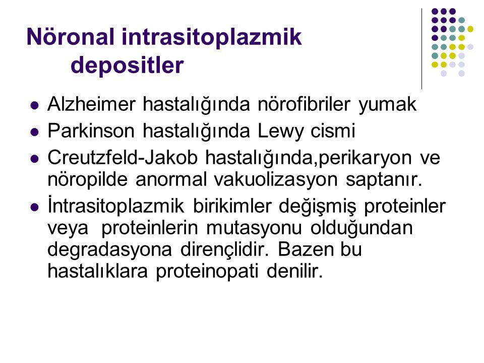 Nöronal intrasitoplazmik depositler Alzheimer hastalığında nörofibriler yumak Parkinson hastalığında Lewy cismi Creutzfeld-Jakob hastalığında,perikary