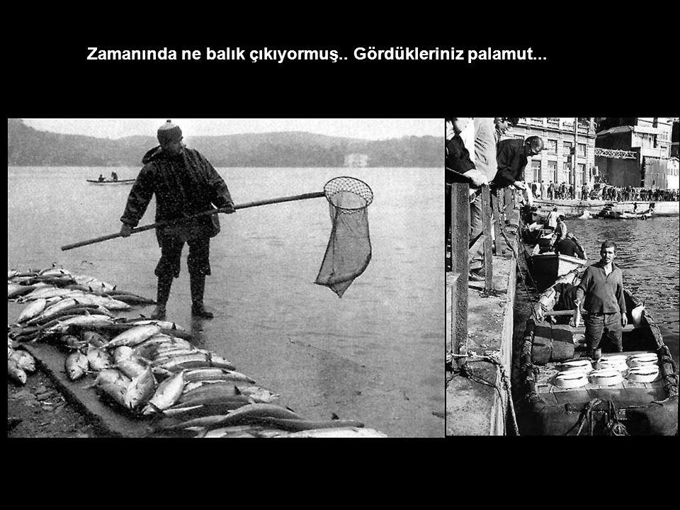 Unkapanı ndaki Tarihi su kemerleri, az bilinen adıyla Bozdağan kemerleri..