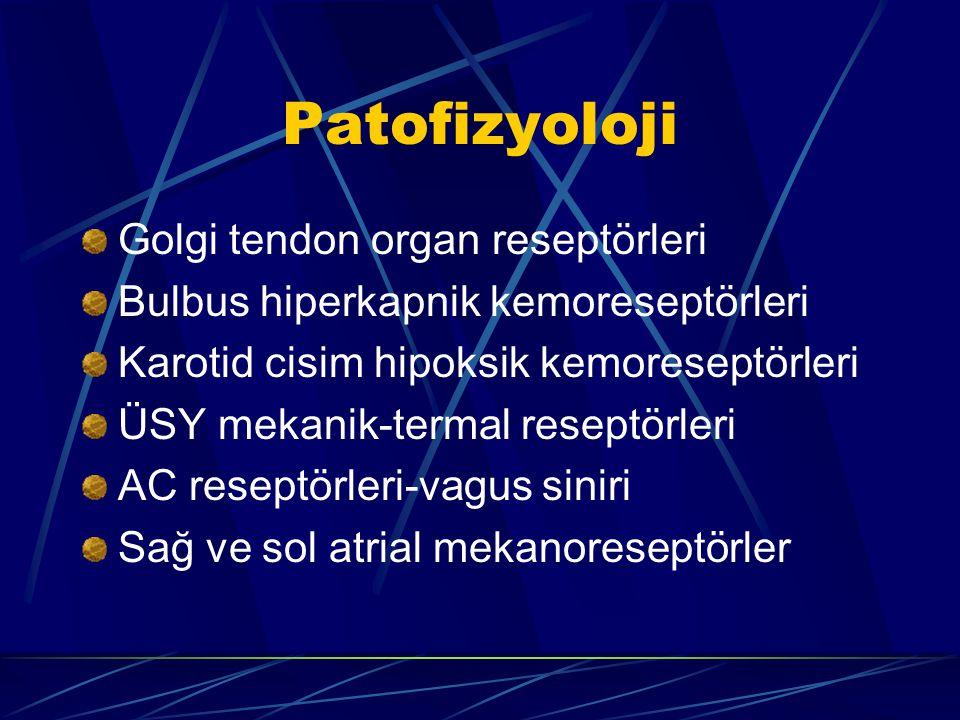 Patofizyoloji Golgi tendon organ reseptörleri Bulbus hiperkapnik kemoreseptörleri Karotid cisim hipoksik kemoreseptörleri ÜSY mekanik-termal reseptörleri AC reseptörleri-vagus siniri Sağ ve sol atrial mekanoreseptörler