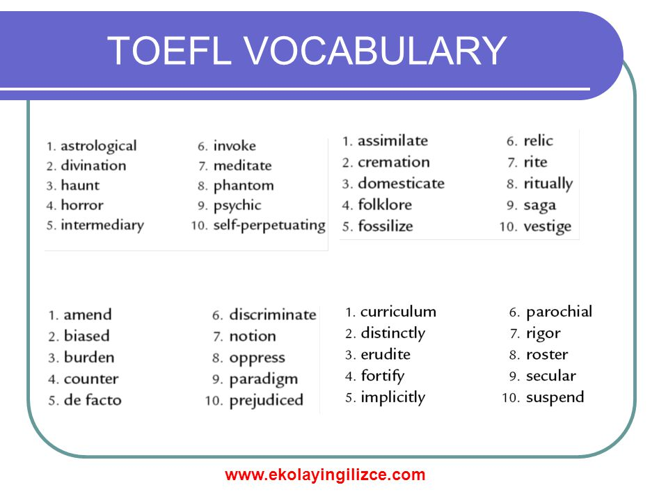 TOEFL VOCABULARY