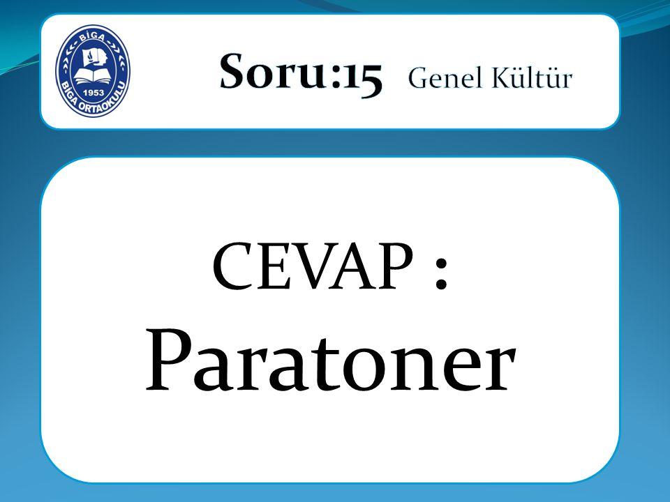 CEVAP : Paratoner