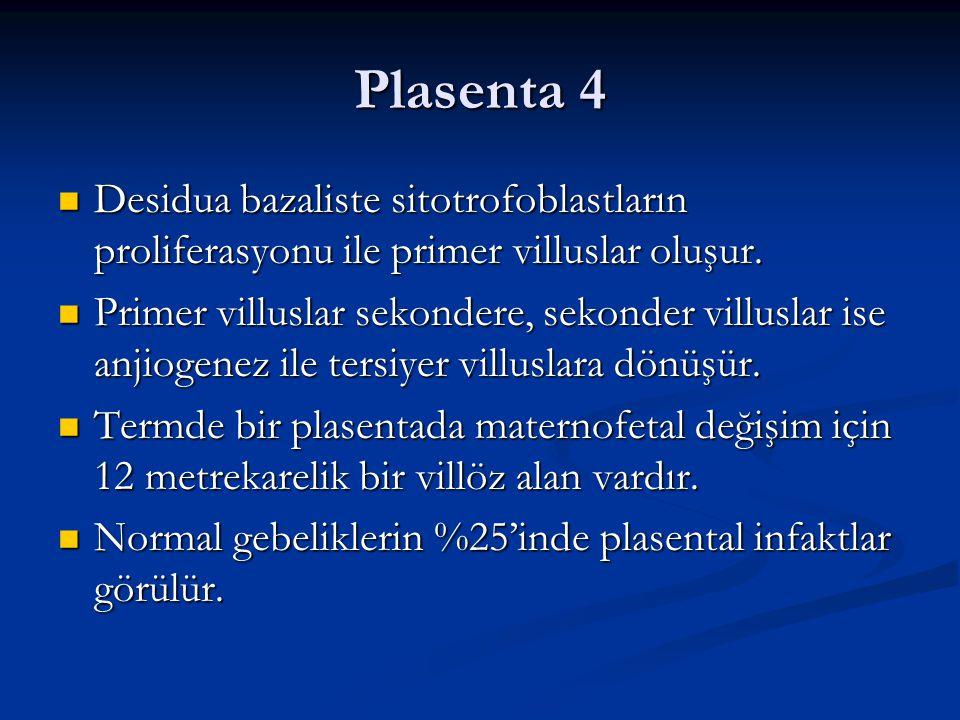 Plasenta 4 Desidua bazaliste sitotrofoblastların proliferasyonu ile primer villuslar oluşur. Desidua bazaliste sitotrofoblastların proliferasyonu ile