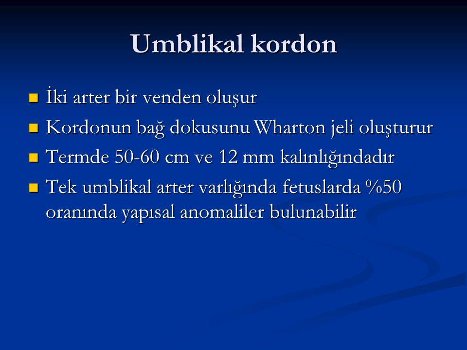 Umblikal kordon İki arter bir venden oluşur İki arter bir venden oluşur Kordonun bağ dokusunu Wharton jeli oluşturur Kordonun bağ dokusunu Wharton jel