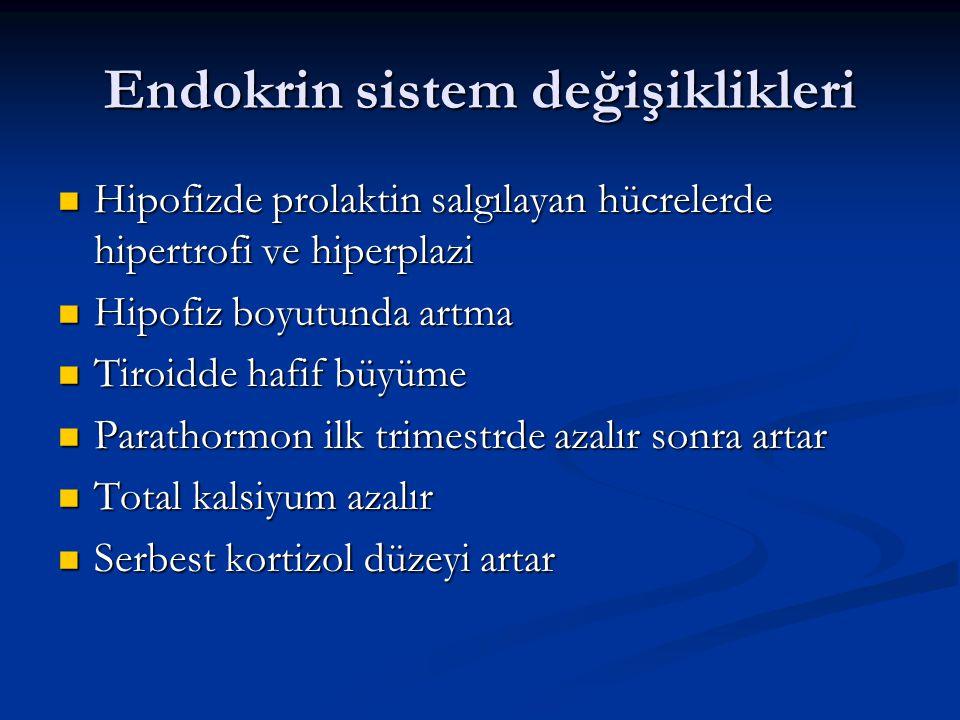 Endokrin sistem değişiklikleri Hipofizde prolaktin salgılayan hücrelerde hipertrofi ve hiperplazi Hipofizde prolaktin salgılayan hücrelerde hipertrofi