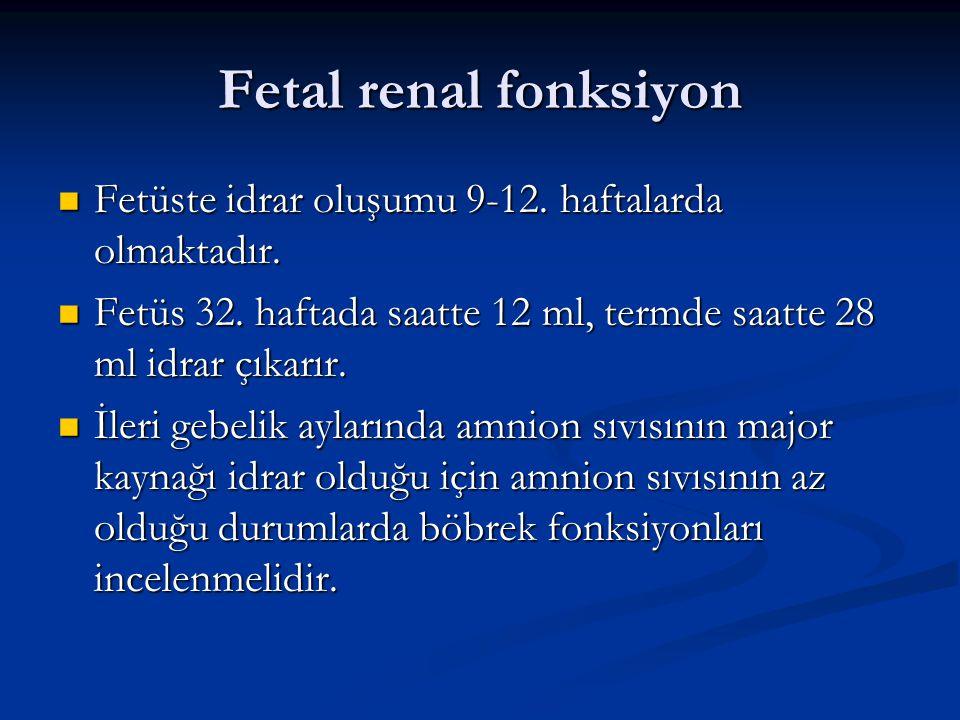 Fetal renal fonksiyon Fetüste idrar oluşumu 9-12. haftalarda olmaktadır. Fetüste idrar oluşumu 9-12. haftalarda olmaktadır. Fetüs 32. haftada saatte 1