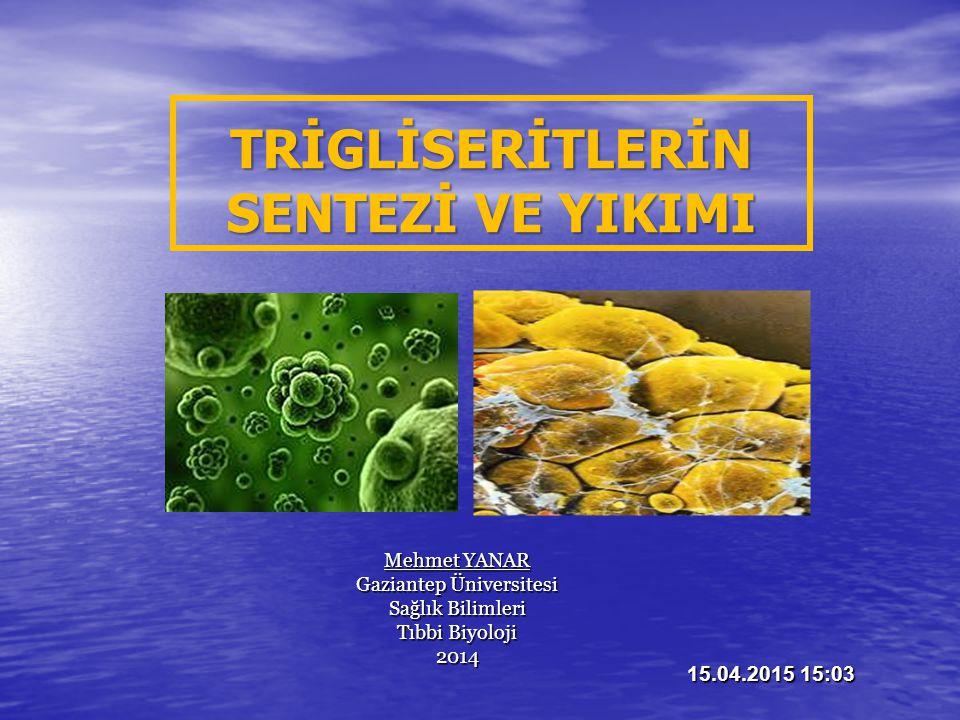 Mehmet YANAR Gaziantep Üniversitesi Sağlık Bilimleri Tıbbi Biyoloji 2014 15.04.2015 15:04 TRİGLİSERİTLERİN SENTEZİ VE YIKIMI