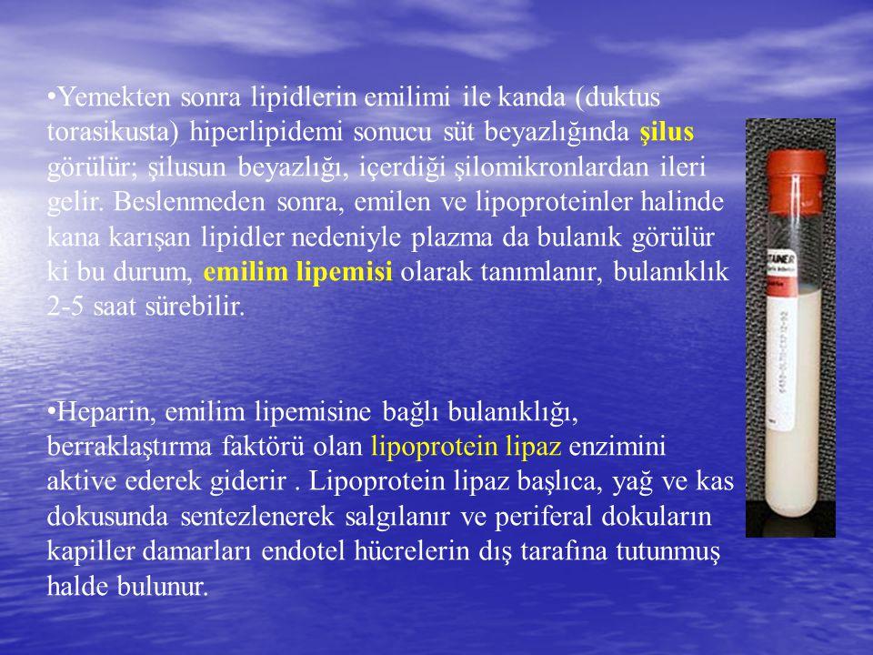 Yemekten sonra lipidlerin emilimi ile kanda (duktus torasikusta) hiperlipidemi sonucu süt beyazlığında şilus görülür; şilusun beyazlığı, içerdiği şilo