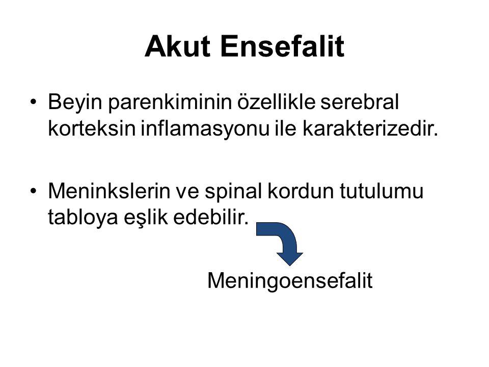Akut Ensefalit Beyin parenkiminin özellikle serebral korteksin inflamasyonu ile karakterizedir. Meninkslerin ve spinal kordun tutulumu tabloya eşlik e