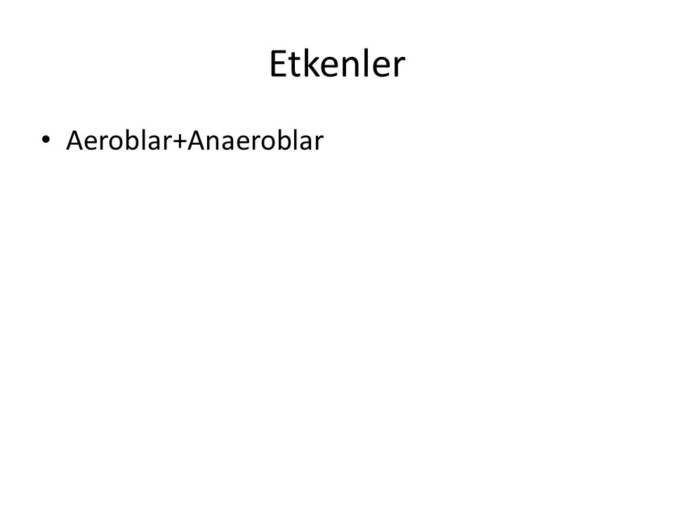 Etkenler Aeroblar+Anaeroblar