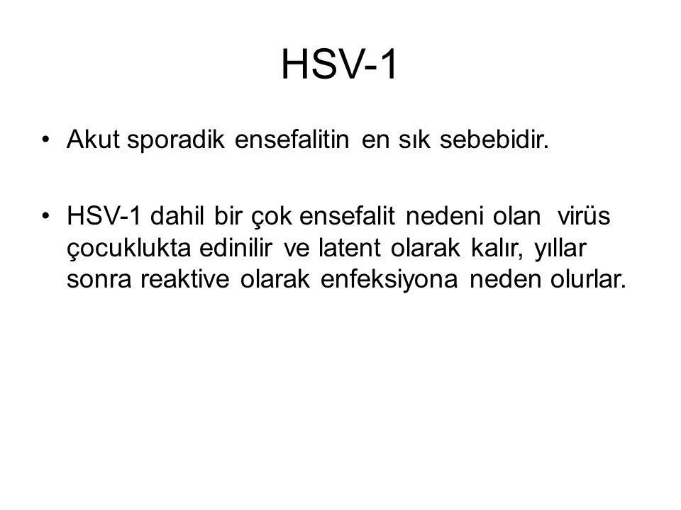HSV-1 Akut sporadik ensefalitin en sık sebebidir. HSV-1 dahil bir çok ensefalit nedeni olan virüs çocuklukta edinilir ve latent olarak kalır, yıllar s