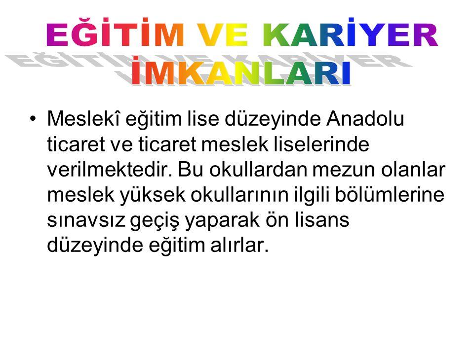 Meslekî eğitim lise düzeyinde Anadolu ticaret ve ticaret meslek liselerinde verilmektedir.