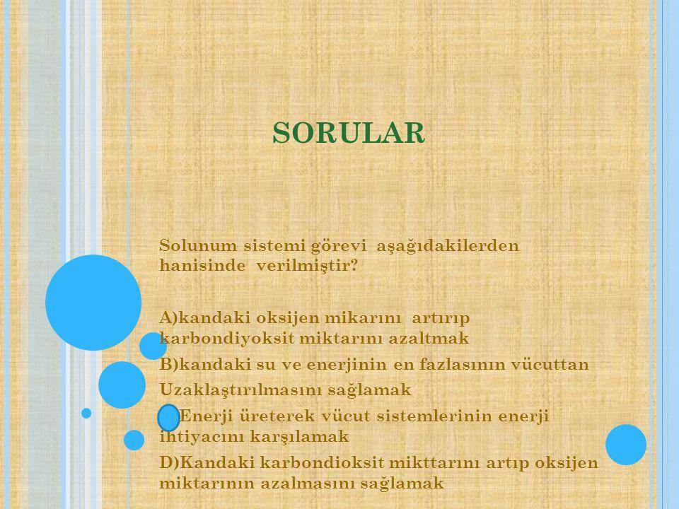 SORULAR Solunum sistemi görevi aşağıdakilerden hanisinde verilmiştir.